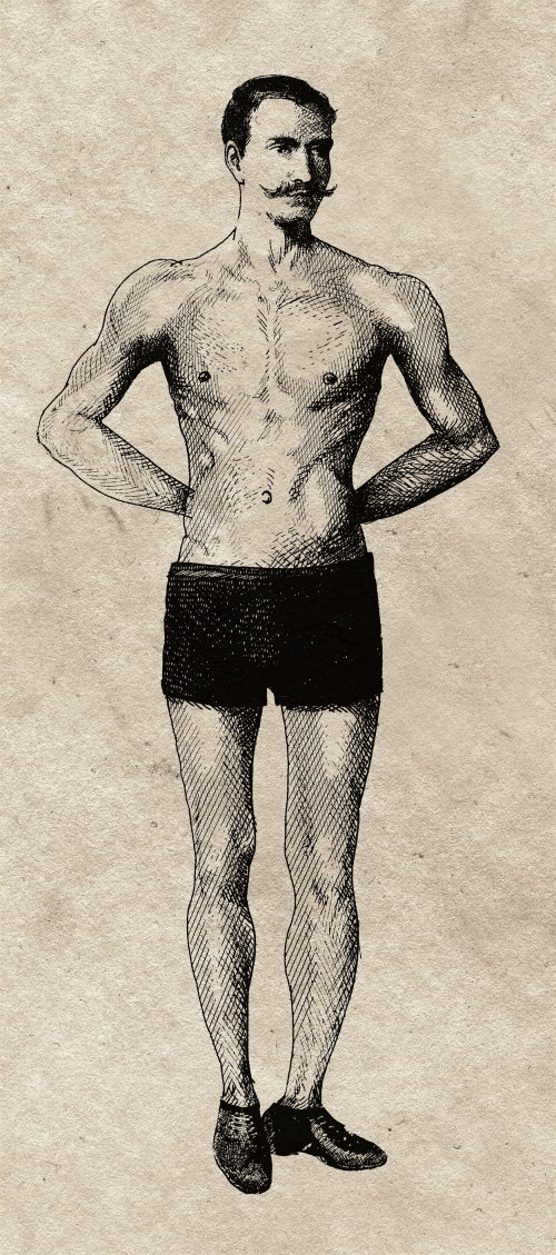 An illustration of man body