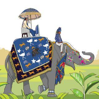 Illustration for Teehaus Ronneveldt's Duke of Grey Tea packaging.