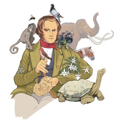 Charles Darwin Evolution Theor