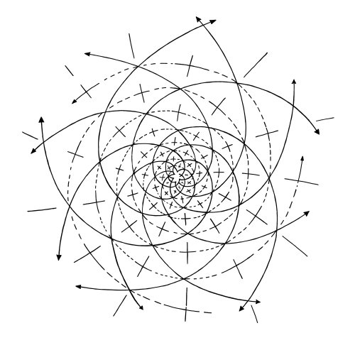 Line drawing of Fibonacci's intersecting spirals