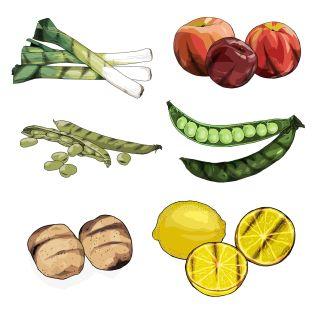 Fruit and vegetables illustration by Jonathan Allardyce