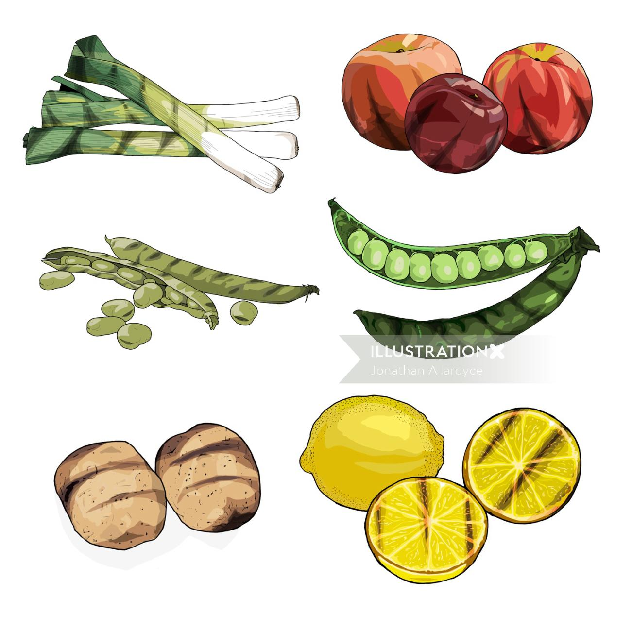 Fruit and vegetables illustration by Jonathan Allardyce