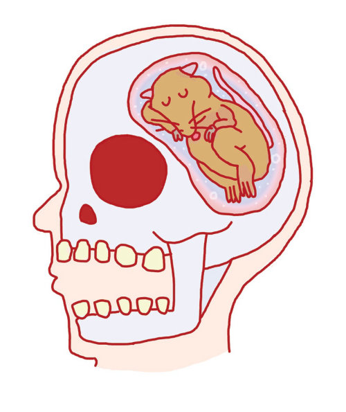 Ilustración cómica de rata dentro de la mente