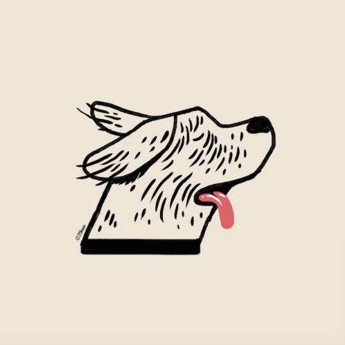Animation of dog hair flying