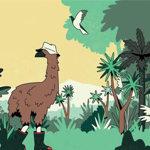 Cartoon & humour animals in forest