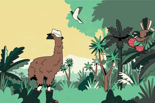 Animais de desenho animado e humor na floresta