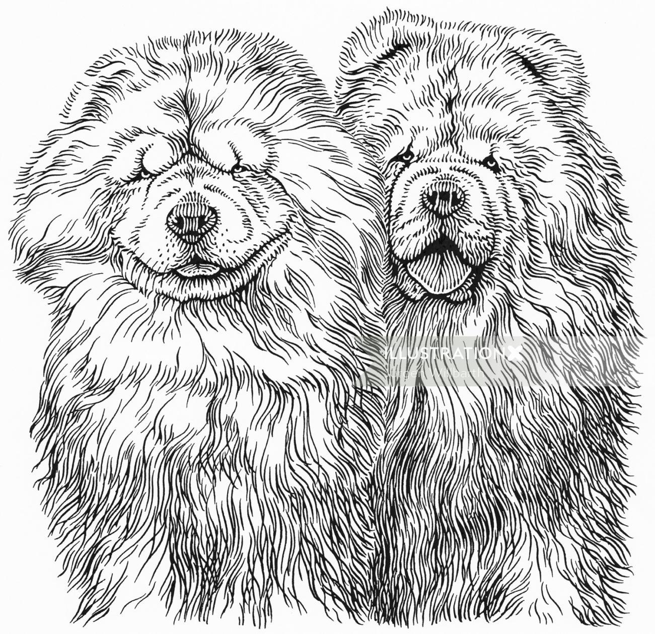 Dog illustration by Jürgen Willbarth