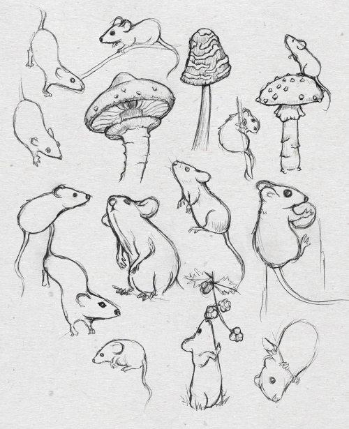 铅笔画的老鼠和蘑菇艺术