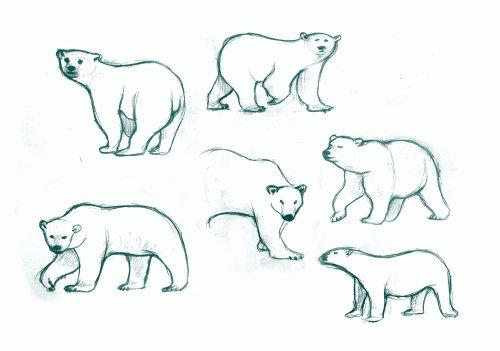 北极熊线条艺术