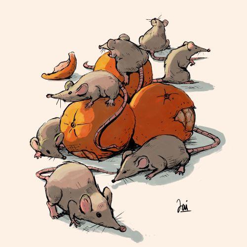 Animal Rat graphic design