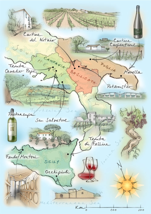 Italy, wine, vineyards, Sicily, grapevines