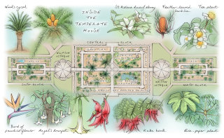 map panel, heritage interpretation, floor plan, glasshouse, plants, trees, garden