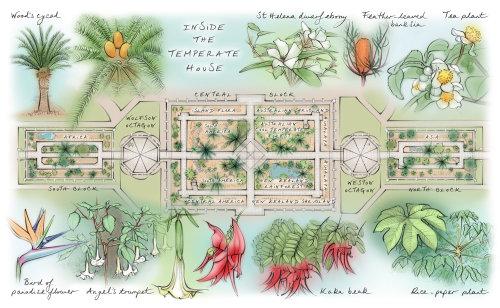 map panel, heritage interpretation, floor plan, glasshouse, plants, trees, garden