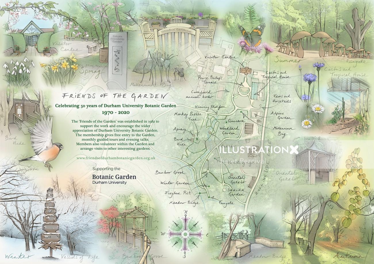 bull finch, tropical house, autumn, butterfly, bamboo grove, gazebo, bird hide, winter