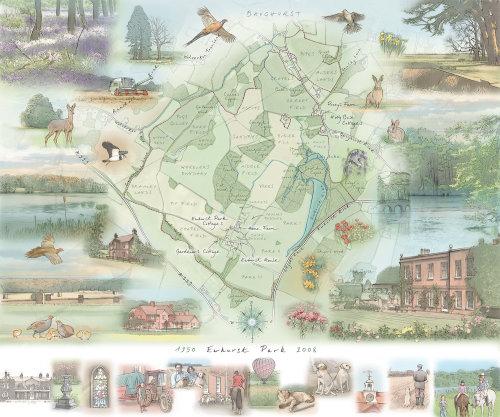 Ewhurst Lake, bluebell wood, cedar trees, partridge, pheasant, hare, deer, lapwing, skylark