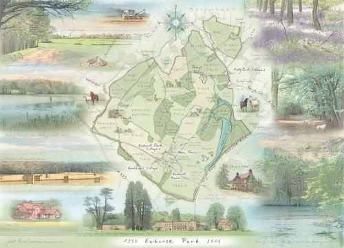 Ewhurst Lake, bluebell wood, cedar trees, harvest, gardener's cottage, compass, horses, fields, esta