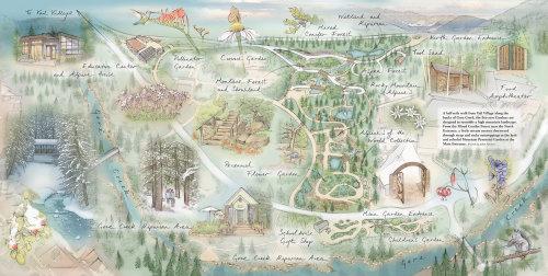 flowers garden, Gore Creek, Montane Forest, education centre, wetland, riparian