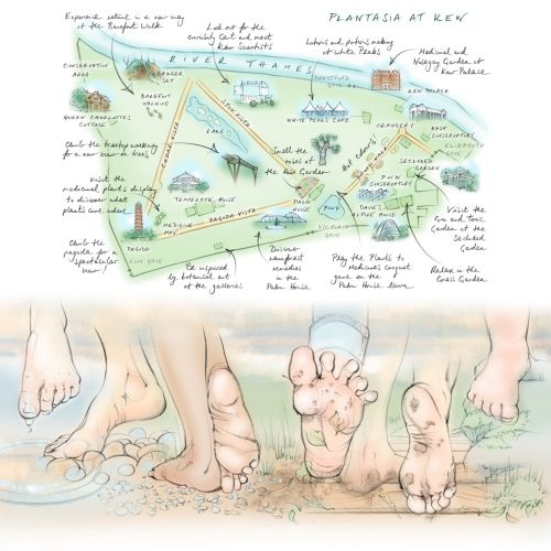 map, kew gardens, plant display, barefoot, walking, feet, toes, pebbles