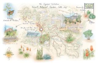 Botanical Garden, butterfly, aloe vera, cactus, sonoran desert, nature trail, horticulture