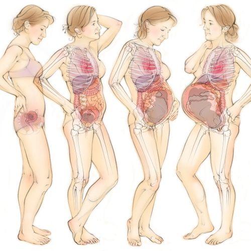 Juliet Percival Medical People Illustrator