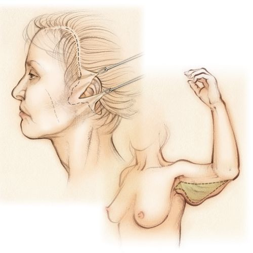 Juliet Percival Medical 美人 Illustrator