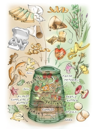 compost, food, recycling, waste, gardening, plants, vegetables, editorial, decomposition