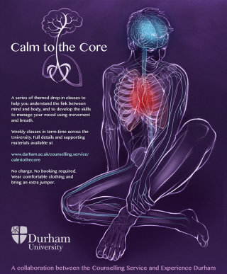 yoga, health, anatomy, sitting pose, exercise, brain