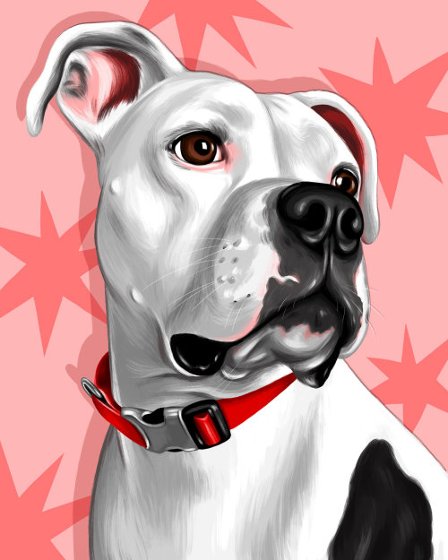 Portrait art of dog