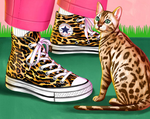 Converse All Star dream shoes illustration