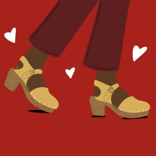 beautiful clogs illustration