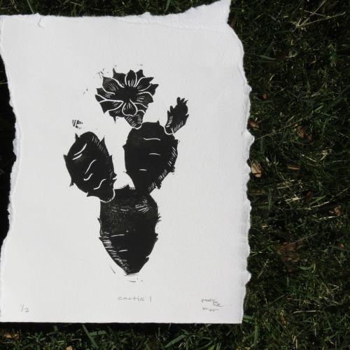 Juno Rose Gráfica