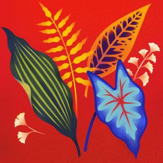 Leaves sketch graphics illustration