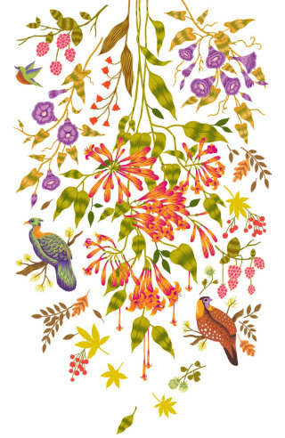 Theme  of nature and bird Decal graphics created for Asian Paints