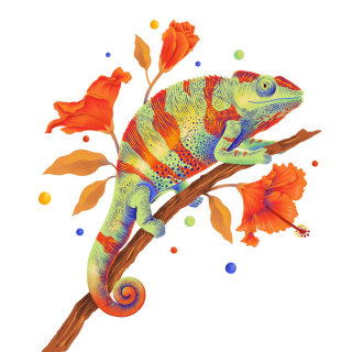 Chameleon illustration with vibrant colours & graphic textures
