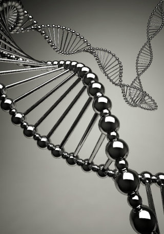 3d art DNA image