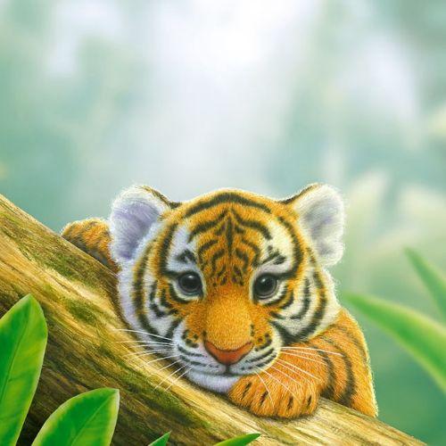 Kai Klimiont Animals Illustrator from Germany