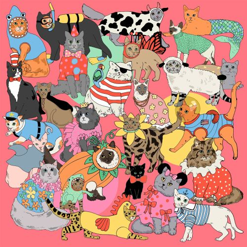 Karen Mabon Animals Illustrator from UK