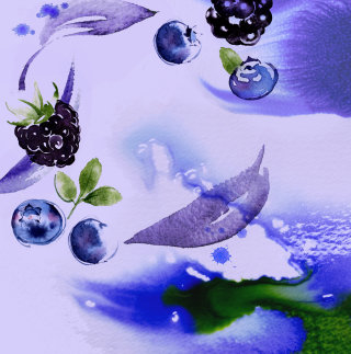 Blackberries & Blueberries Watercolour Painting