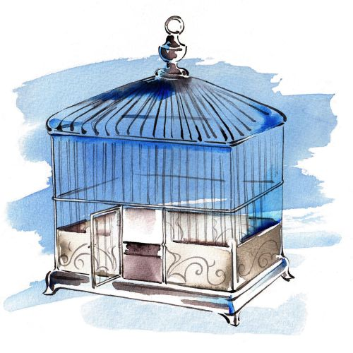 Watercolour painting of bird cage for oxford university press