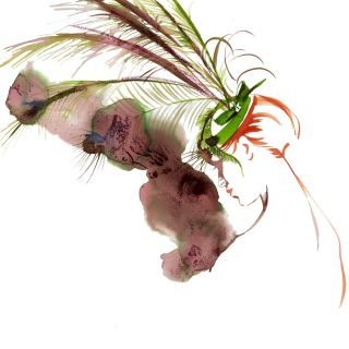 Katharine Asher - International Figurative & Fashion Illustrator. UK