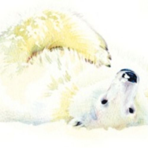 Illustration of Polar Bear Christmas Card