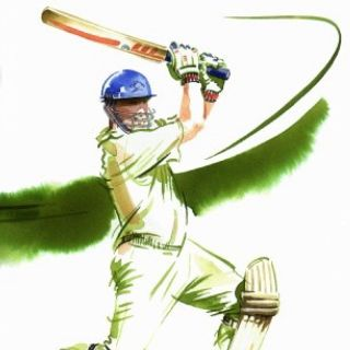 Cricket illustration by Katharine Asher