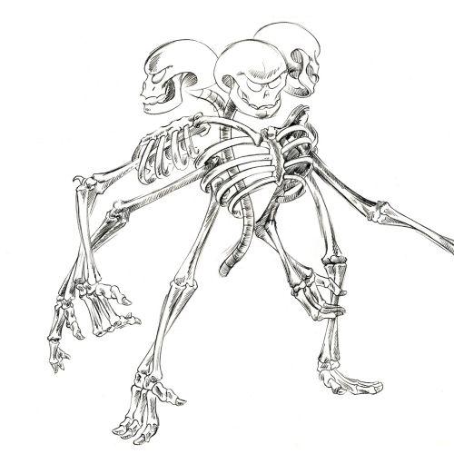 An illustration of Skeleton Monster