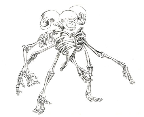 An illustration of Skeleton Monster