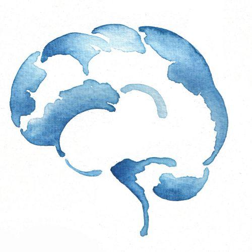 Brain Illustration | Medical illustration collection