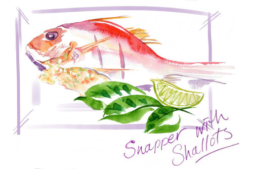 Editorial of Red snapper