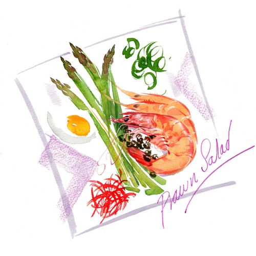 editorial watercolour drawing of prawn salad