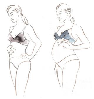 Amoralia  pregnancy underwear  Katharine Asher