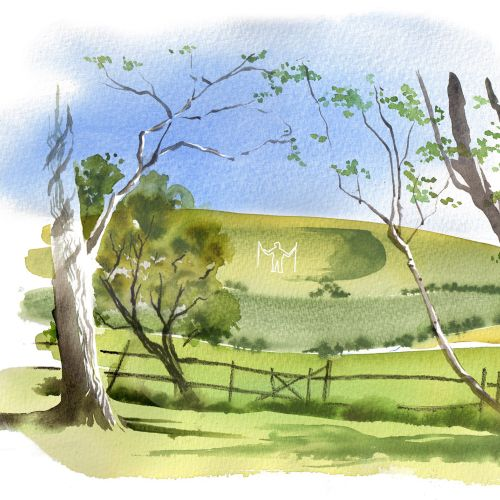 The south downs illustration by Katharine Asher