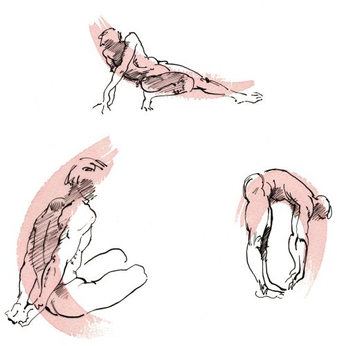 Fitness illustration by Katharine Asher